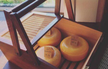 Zelf gemaakte kaas