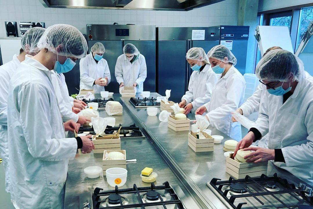 Kaas maken in de klas