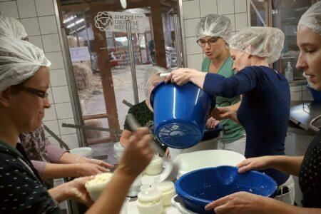 Uniek dagje uit: kaas maken